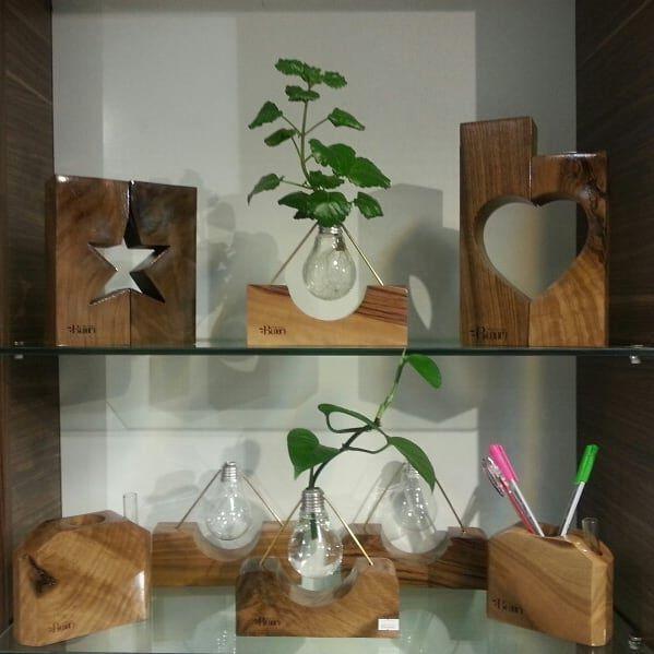 گلدان طبیعی و زیبا در محفظه ای شیشه ای