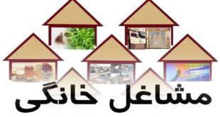 استقبال دانشجویان و زنان خانه دار از طرح ملی توسعه مشاغل خانگی صنایع دستی میناکاری